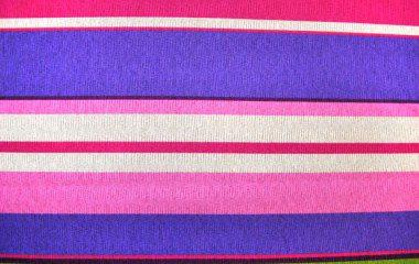 Multicolor Stripes Purple