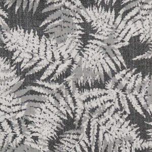 Bessis 00002 Ferns