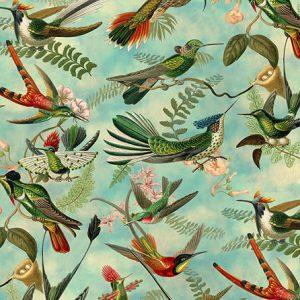 Colibri 10.13.0021