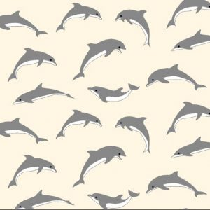 Dolphins 10.10.0097