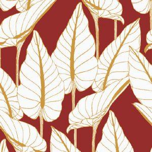Araceae 11.10.0010