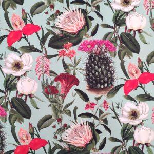 Cactus n Flowers 11.13.0001
