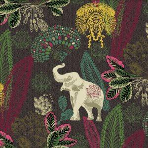 India Elephants II 11.20.0006